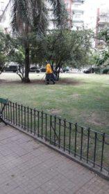 Detectan alacranes en la Comuna 10
