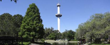 Temor por el impacto de las obras de la Villa Olímpica en el ex Parque de la Ciudad