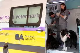 El fin de semana habrá atención veterinaria gratuita en la Plaza Vélez Sarsfield