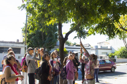 En busca de los sabores del barrio | Realizan una recorrida por Versalles para conocer sus árboles frutales y plantas medicinales