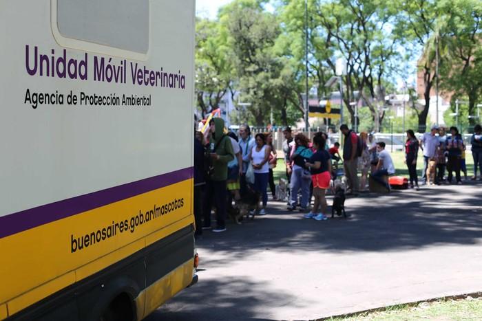 Atención veterinaria gratuita en el Parque Avellaneda