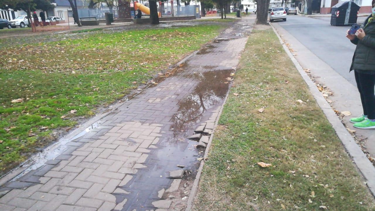 Los espacios verdes en cuarentena  | El desafío de transitar la Plaza Vacarezza
