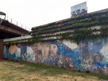 """La Comuna 10 gastó más de 100 mil pesos en el """"Mantenimiento Integral de Muros Verdes"""""""