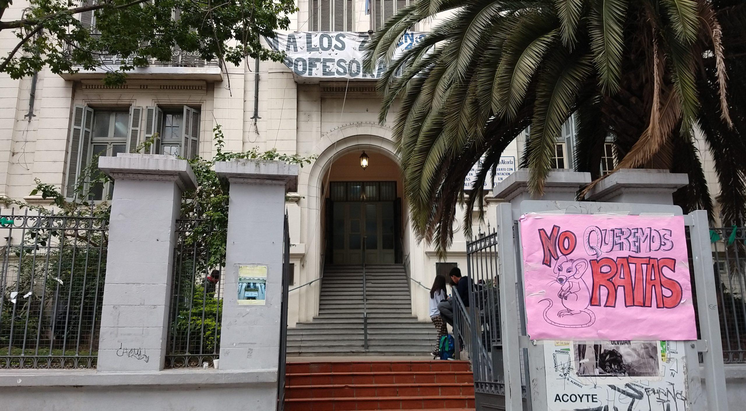 Exigen campaña urgente de desratización en la Ciudad | Proponen priorizar escuelas, clubes y comedores barriales